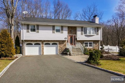 Montvale Single Family Home For Sale: 27 Ladik Place