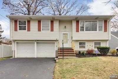 Maywood Single Family Home For Sale: 772 Palmer Avenue