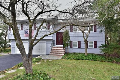 Bloomingdale Single Family Home For Sale: 33 Charles Street