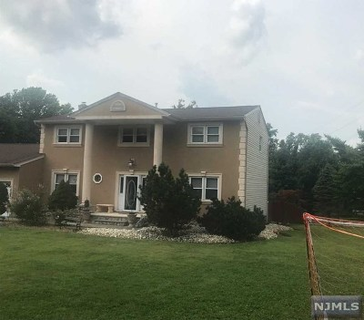 Randolph Township Single Family Home For Sale: 9 Bedminster Road