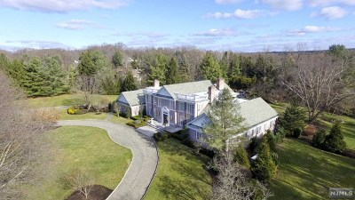 Saddle River Single Family Home For Sale: 4 High Meadow Road