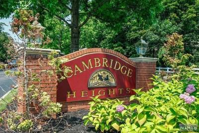 Ramsey Condo/Townhouse For Sale: 330 Cambridge Drive #Bld #10