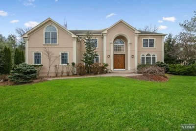 River Vale NJ Single Family Home For Sale: $1,099,000