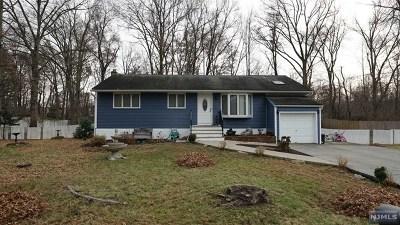 Morris County Single Family Home For Sale: 8 Sylvan Street