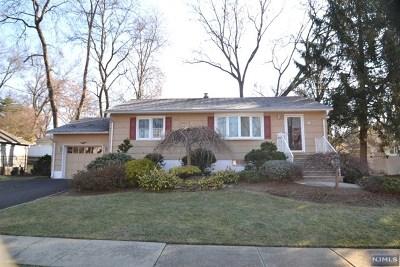 Twp Of Washington NJ Single Family Home For Sale: $399,900