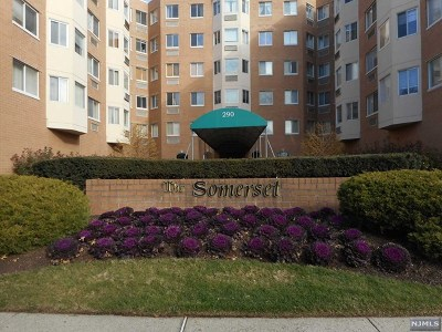 Hackensack Condo/Townhouse For Sale: 290 Anderson Street #6i