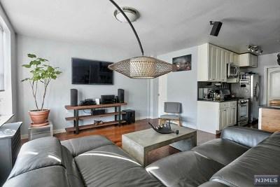 Union City Condo/Townhouse For Sale: 3315-19 Pleasant Avenue #223/224
