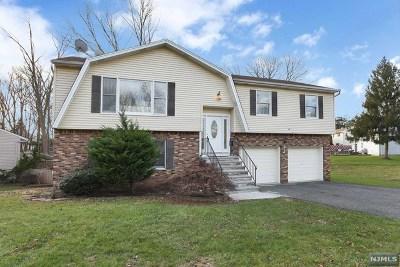 New Milford Single Family Home For Sale: 314 Kastler Court