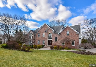 Morris County Single Family Home For Sale: 6 Van Duyne Court