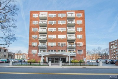 Hackensack Condo/Townhouse For Sale: 20 Jefferson Street #A1