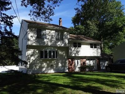 Cresskill Single Family Home For Sale: 399 Grant Avenue