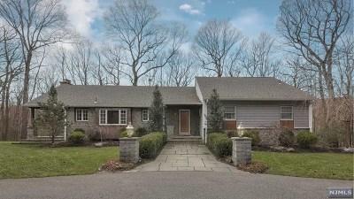 Morris County Single Family Home For Sale: 513 Pepperidge Tree Lane