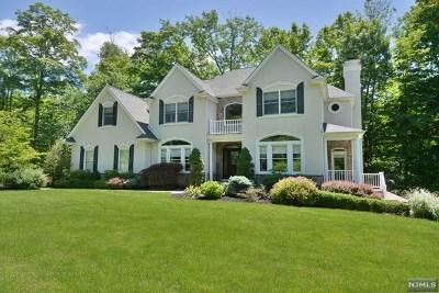 Morris County Single Family Home For Sale: 319 Kinnelon Road