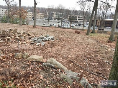 Englewood Cliffs Residential Lots & Land For Sale: 577 Floyd Street