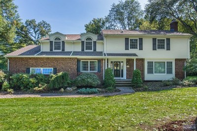 Wyckoff Single Family Home For Sale: 720 Birchwood Drive