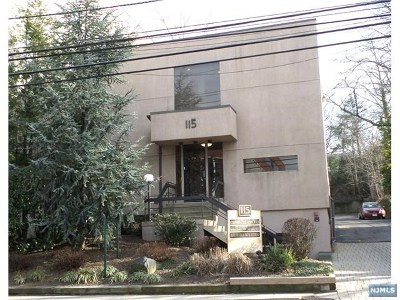 Englewood Commercial For Sale: 115 Grand Avenue