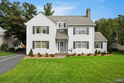 Ho-Ho-Kus Single Family Home For Sale: 182 Lakewood Avenue