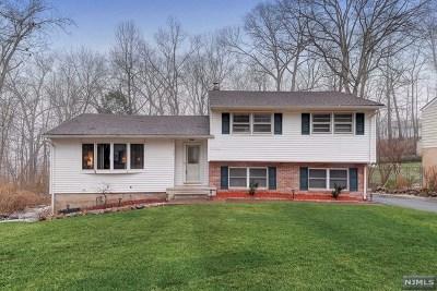 Ringwood Single Family Home For Sale: 32 Smokey Ridge Road