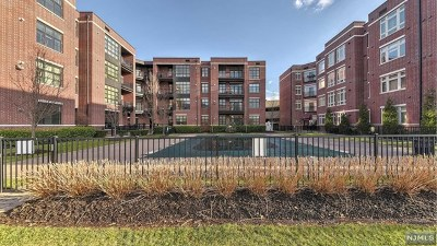 Englewood Condo/Townhouse For Sale: 2222 Riverview Avenue