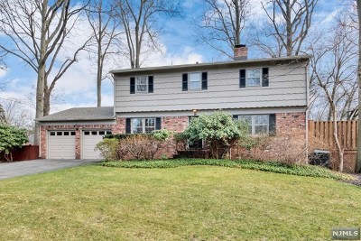 Hillsdale Single Family Home For Sale: 9 Avon Court