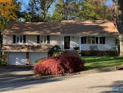 Passaic County Single Family Home For Sale: 9 Brookwood Drive