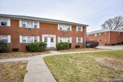 Passaic County Condo/Townhouse For Sale: 1179b Valley Road