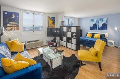 Hudson County Condo/Townhouse For Sale: 100 Manhattan Avenue #1613s
