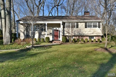 Woodcliff Lake Single Family Home For Sale: 23 James Street