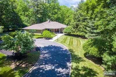 Saddle River NJ Single Family Home For Sale: $1,169,000