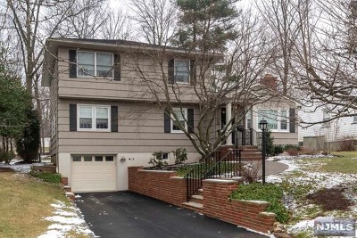 Essex County Single Family Home For Sale: 38 Kroy Court