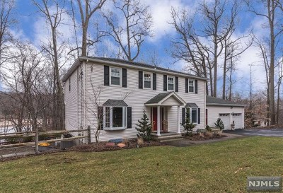 Bergen County Single Family Home For Sale: 536 West Saddle River Road