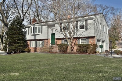 Park Ridge NJ Single Family Home For Sale: $499,000