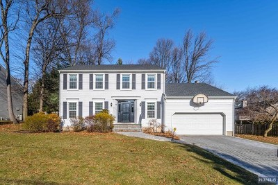 Cresskill Single Family Home For Sale: 117 Davenport Avenue