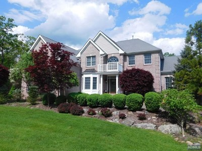 Morris County Single Family Home For Sale: 204 South Glen Road