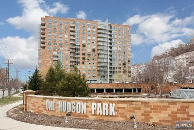 Edgewater Condo/Townhouse For Sale: 1510 Hudson Park
