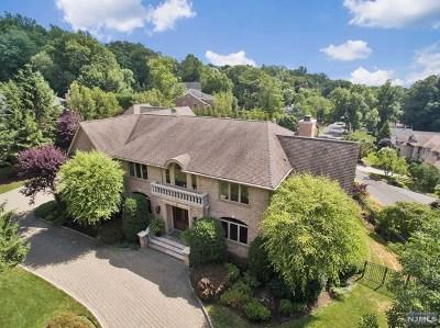 Tenafly Single Family Home For Sale: 262 Hudson Avenue