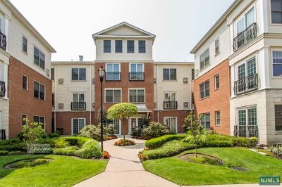 Tenafly Condo/Townhouse For Sale: 2315 The Plaza