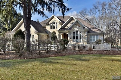 Upper Saddle River Single Family Home For Sale: 285 East Saddle River Road