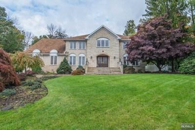 Morris County Single Family Home For Sale: 18 Garrity Terrace