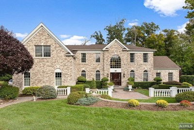 Woodcliff Lake Single Family Home For Sale: 6 Mulholland Drive