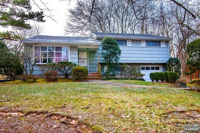 Closter Single Family Home For Sale: 156 Hickory Lane
