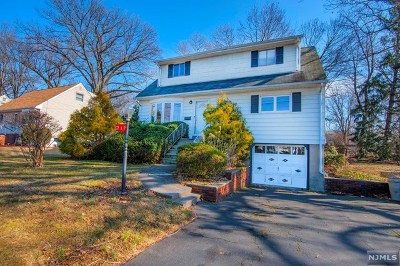 Dumont Single Family Home For Sale: 217 Bedford Road