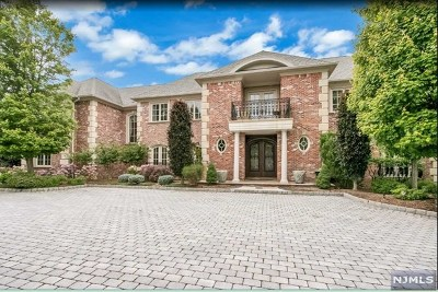 Cresskill Single Family Home For Sale: 205 Vaccaro Drive