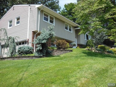 Woodcliff Lake Single Family Home For Sale: 11 Michael Street