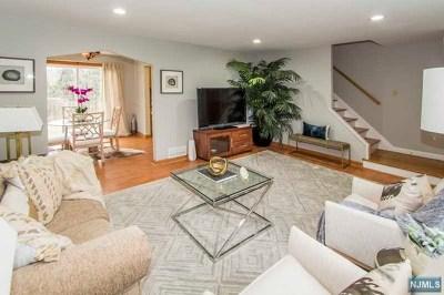 Cresskill Single Family Home For Sale: 12 Morningside Avenue