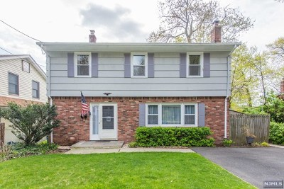 Morris County Single Family Home For Sale: 8 Shawnee Trail