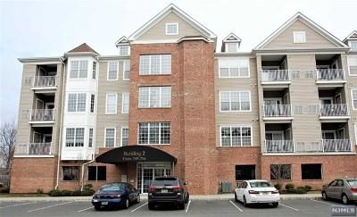 Elmwood Park Condo/Townhouse For Sale: 269 Cory Lane