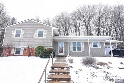 Rockaway Township Single Family Home For Sale: 7 Doreen Court