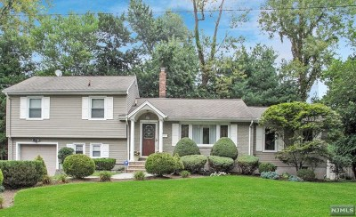 Cresskill NJ Single Family Home For Sale: $729,900
