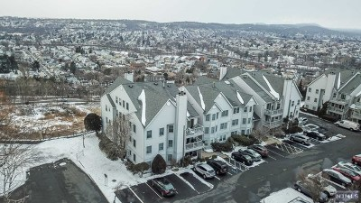 Passaic County Condo/Townhouse For Sale: 3 Crystal Lane